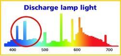 放電ランプ