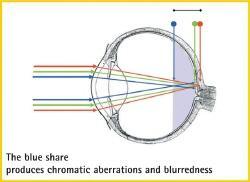 青色光からの目の焦点